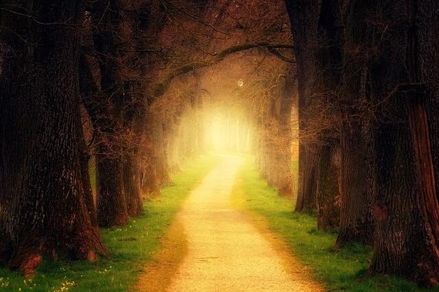 el valor del anillo camino luz
