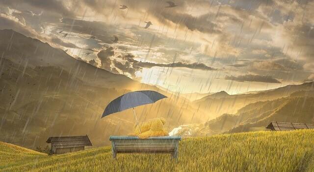 refugio emocional naturaleza