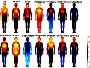 ¿En qué parte del cuerpo sientes las emociones?