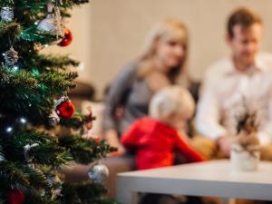 Cómo sobrevivir a la cena de Navidad